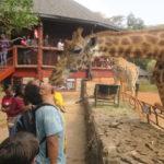 ケニア ナイロビ 365DAYS  part2 (MAR/23/2019)
