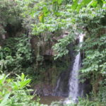 タンザニア モシ 377DAYS  (APR/4/2019)