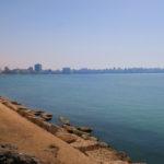 エジプト アレキサンドリア 423DAYS  (MAY/20/2019)