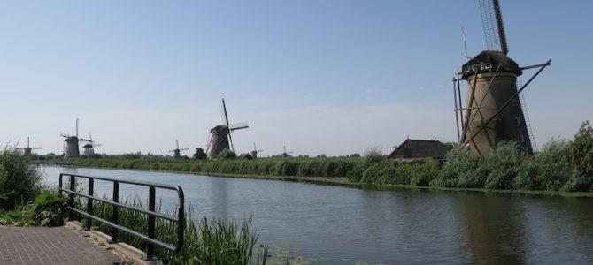 オランダ ロッテンダム 467DAYS  (JUL/26/2019)