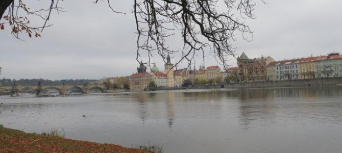 チェコ プラハ 553DAYS(OCT/20/2019)