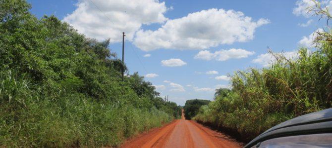 パラグアイ イグアスコロニア 644AYS(JAN/25/2020)