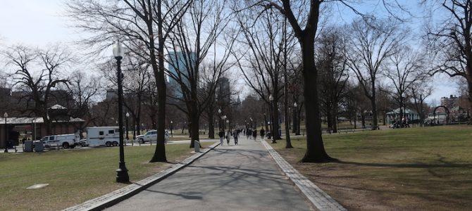 アメリカ ボストン 690DAYS(MAR/11/2020)