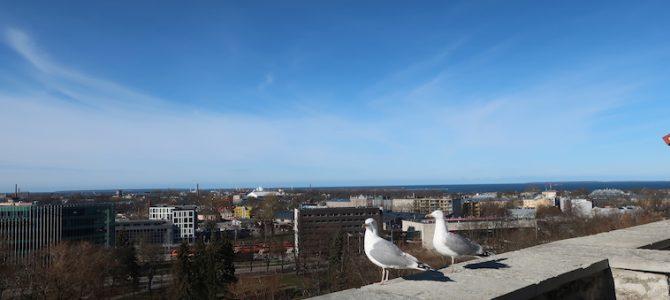 フィンランド エストニア 国境越え 694DAYS(MAR/15/2020)